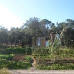 casa de fang i hort