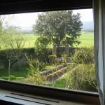 finestra amb vista al jardí